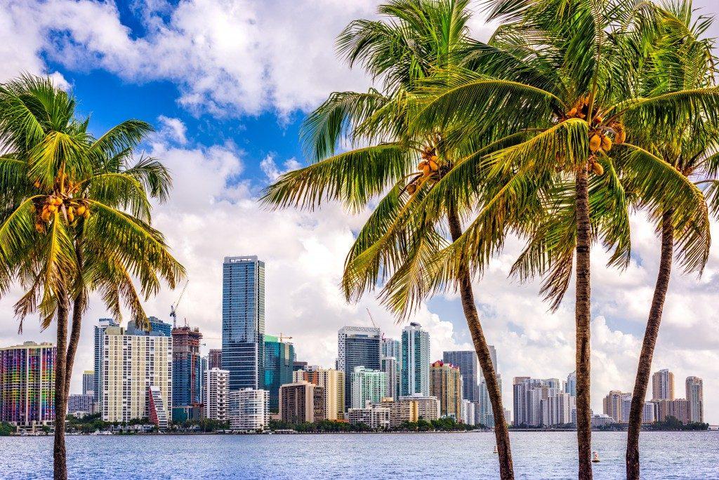Miami, Florida, USA tropical downtown skyline